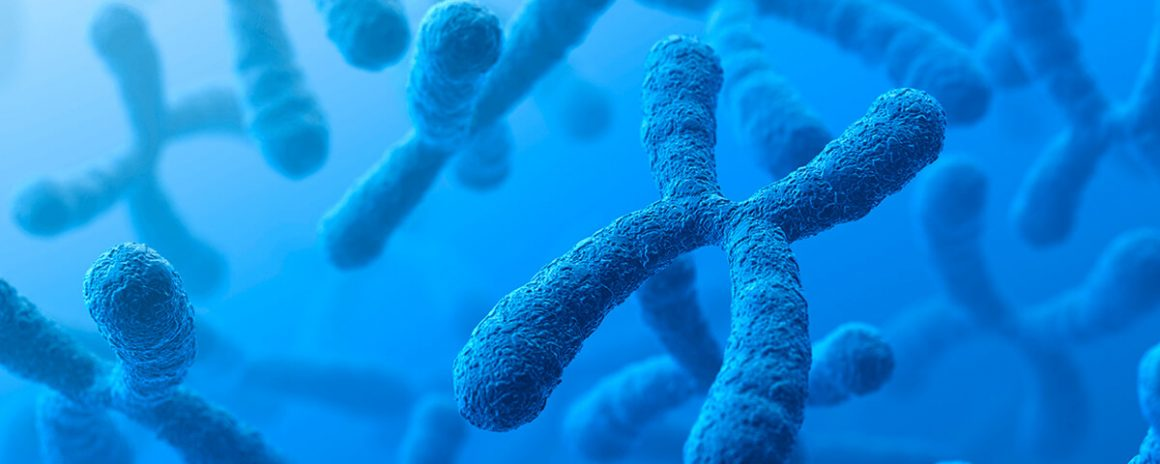 Teste de citogenetica