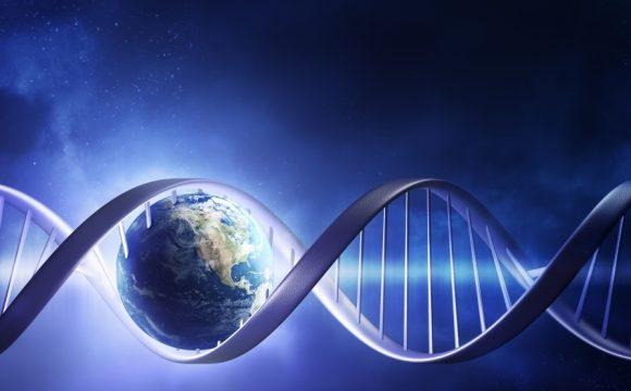 Teste de biologie moleculara